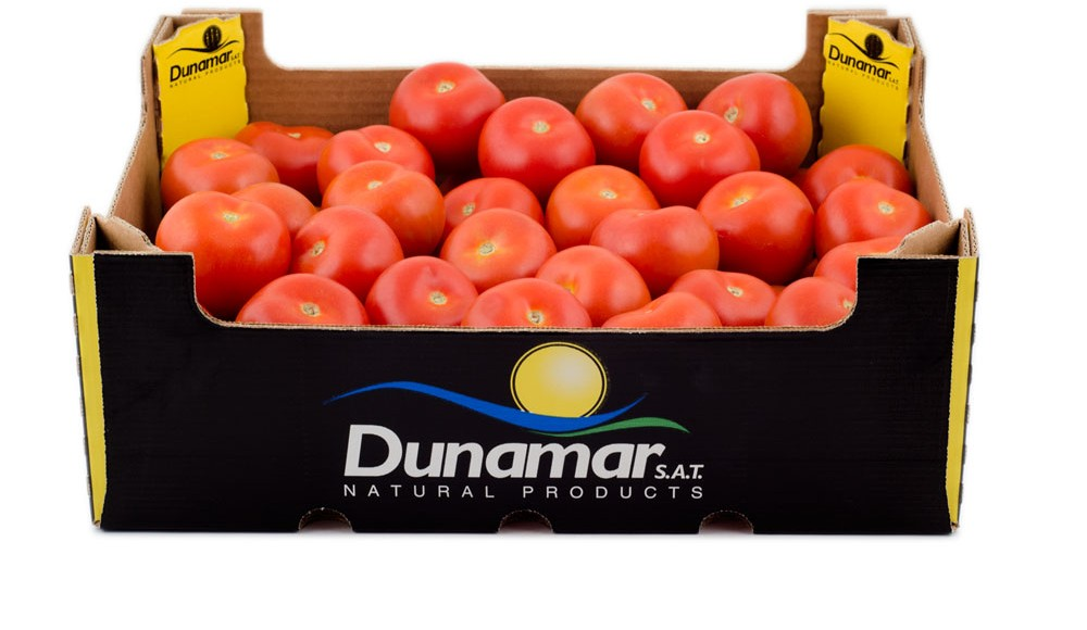Tomate Long Life