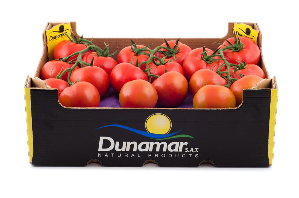 tomate-rama-DN-0111